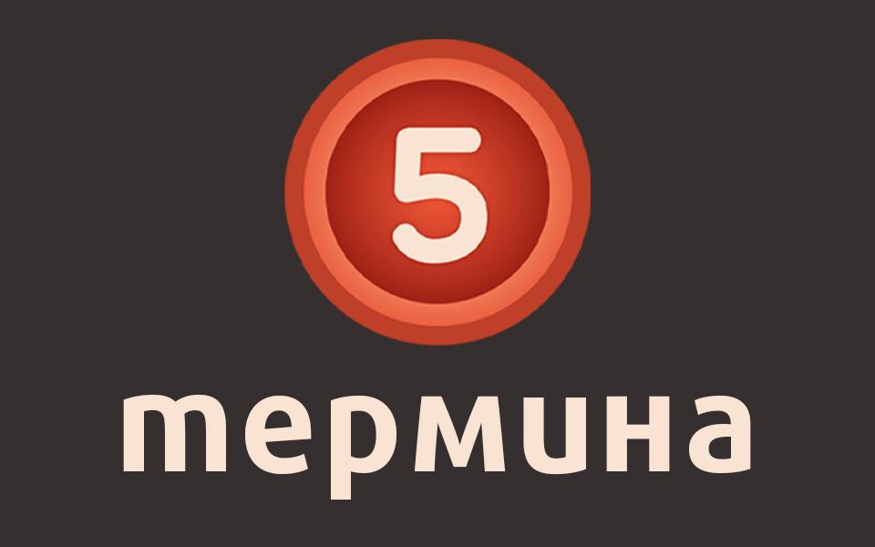 5 термина